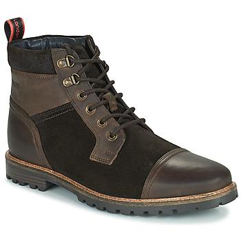 Schoenen Heren Laarzen Base London ROGAN Brown