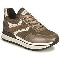 Schoenen Dames Lage sneakers NeroGiardini LENTILLO Brown