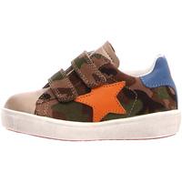 Schoenen Kinderen Lage sneakers Naturino 2014773 05 Bruin