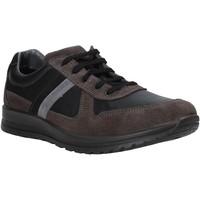 Schoenen Heren Lage sneakers Melluso U15432E Grijs
