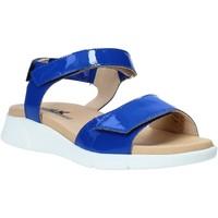 Schoenen Dames Sandalen / Open schoenen Melluso Q60220X Blauw