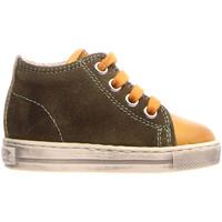 Schoenen Kinderen Hoge sneakers Falcotto 2014600 12 Groen