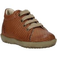 Schoenen Kinderen Hoge sneakers Falcotto 2014581 02 Bruin