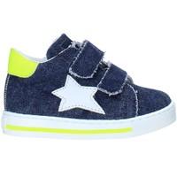 Schoenen Kinderen Lage sneakers Falcotto 2015350 13 Blauw