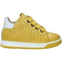 Schoenen Kinderen Lage sneakers Falcotto 2013491 01 Geel