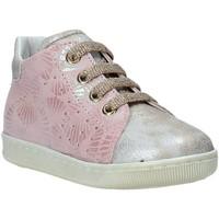 Schoenen Kinderen Lage sneakers Falcotto 2013491 09 Roze