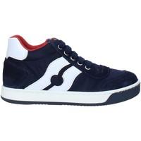 Schoenen Kinderen Lage sneakers Falcotto 2013553 01 Blauw