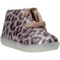Schoenen Meisjes Hoge sneakers Falcotto 2012821 12 Roze