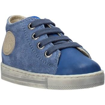Schoenen Kinderen Lage sneakers Falcotto 2014600 12 Blauw
