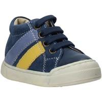 Schoenen Kinderen Lage sneakers Falcotto 2014606 01 Blauw
