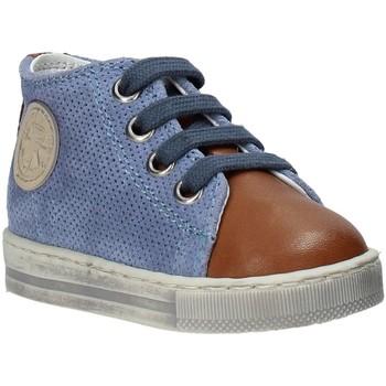 Schoenen Kinderen Hoge sneakers Falcotto 2014600 01 Bruin