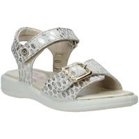 Schoenen Meisjes Sandalen / Open schoenen Naturino 502361 02 Anderen