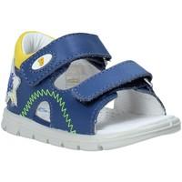 Schoenen Kinderen Sandalen / Open schoenen Falcotto 1500892 01 Blauw