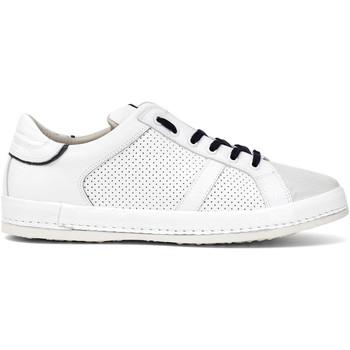 Schoenen Heren Lage sneakers Café Noir PT1050 Wit