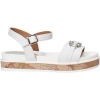 Schoenen Meisjes Sandalen / Open schoenen Alviero Martini 0575 0326 Wit