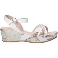 Schoenen Meisjes Sandalen / Open schoenen Alviero Martini 0641 0910 Wit