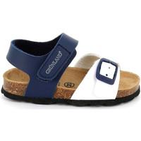 Schoenen Kinderen Sandalen / Open schoenen Grunland SB1892 Blauw