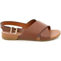 Schoenen Dames Sandalen / Open schoenen Grunland SA2348 Bruin