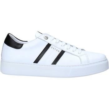 Schoenen Heren Lage sneakers Exton 861 Wit