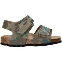 Schoenen Kinderen Sandalen / Open schoenen Balducci AG-1558 Bruin