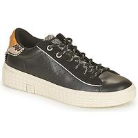 Schoenen Dames Lage sneakers Palladium Manufacture TEMPO 04 SYN Zwart