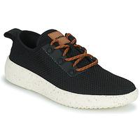 Schoenen Heren Lage sneakers Armistice VOLT HOOK M Zwart