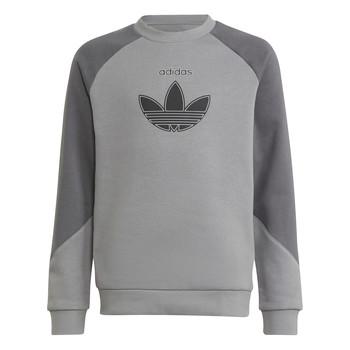 Textiel Kinderen Sweaters / Sweatshirts adidas Originals DREZZ Grijs