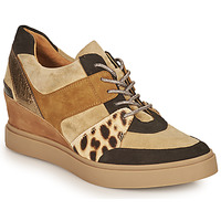 Schoenen Dames Lage sneakers Mam'Zelle PERRY Beige / Zwart / Leopard