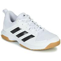 Schoenen Dames Indoor adidas Performance Ligra 7 W Wit