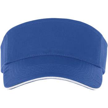 Accessoires Pet Sols ACE AZUL ROYAL Y BLANCO Azul