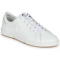 Schoenen Dames Lage sneakers Pataugas JAYO Wit