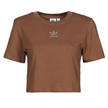 Textiel Dames T-shirts korte mouwen adidas Originals CROPPED  TEE Brown