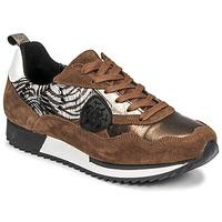 Schoenen Dames Lage sneakers Philippe Morvan ROXA Brown / Zwart
