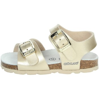 Schoenen Meisjes Sandalen / Open schoenen Grunland SB0392-40 Platinum
