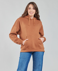 Textiel Dames Sweaters / Sweatshirts Volcom STONE HEART HOODIE Brown