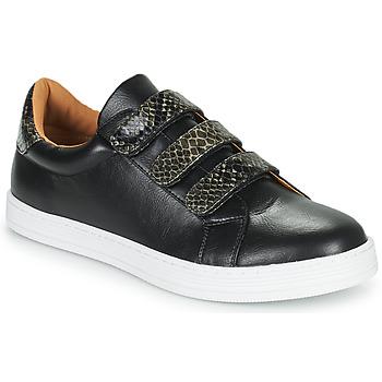 Schoenen Dames Lage sneakers Moony Mood POLINE Zwart