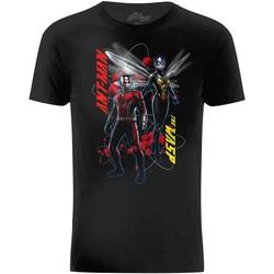Textiel Heren T-shirts korte mouwen Ant-Man  Zwart