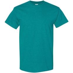 Textiel Heren T-shirts korte mouwen Gildan 5000 Antieke Jade Dome
