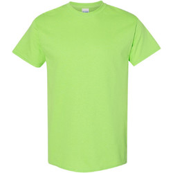 Textiel Heren T-shirts korte mouwen Gildan 5000 Kalk