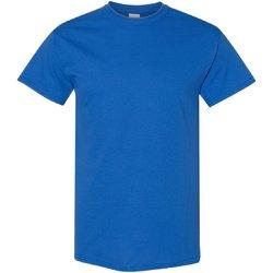 Textiel Heren T-shirts korte mouwen Gildan 5000 Koninklijk