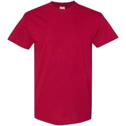 Textiel Heren T-shirts korte mouwen Gildan 5000 Kardinaal