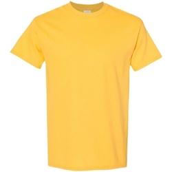 Textiel Heren T-shirts korte mouwen Gildan 5000 Daisy
