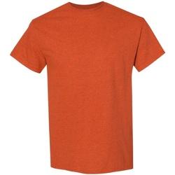 Textiel Heren T-shirts korte mouwen Gildan 5000 Antiek Oranje