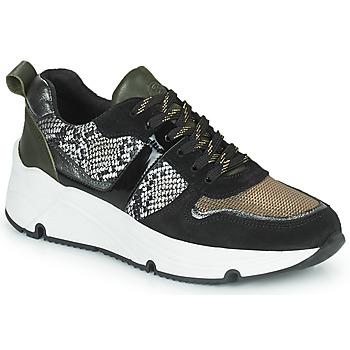 Schoenen Dames Lage sneakers Betty London PRIETTE Zwart