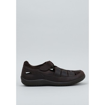 Schoenen Heren Sandalen / Open schoenen Panama Jack  Brown