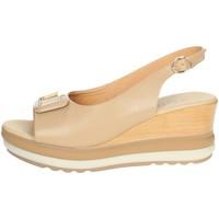 Schoenen Dames Sandalen / Open schoenen Repo 20428-E1 Beige