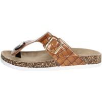 Schoenen Dames Slippers Laura Biagiotti 6858 Brown