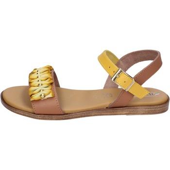 Schoenen Dames Sandalen / Open schoenen Tredy's BH93 Brown
