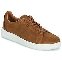 Schoenen Heren Lage sneakers Pellet OSCAR Brown