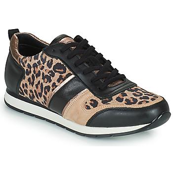 Schoenen Dames Lage sneakers Betty London PARMINE Zwart